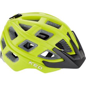KED Kailu Casco Niños, green matt